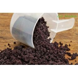 Acai Freeze Dried Powder Organic