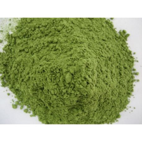 Wheat Grass Powder Organic Grown in USA